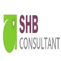 SHB CONSULTANT INDIA PVT LTD